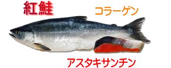 アンチエイジングが自宅で簡単に実践できるブログ-紅鮭