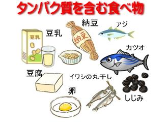 アンチエイジングが自宅で簡単に実践できるブログ-タンパク質を含む食べ物