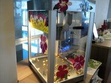 東広島発 婚活バスの芸陽ハミングツアー