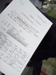 MISSY★LABRADOR RETRIEVER-狂犬病予防接種1