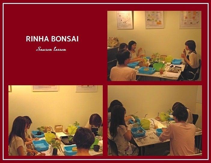 bonsai life      -盆栽のある暮らし- 東京の盆栽教室 琳葉(りんは)盆栽 RINHA BONSAI-琳葉盆栽教室③