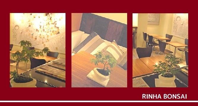 bonsai life      -盆栽のある暮らし- 東京の盆栽教室 琳葉(りんは)盆栽 RINHA BONSAI-琳葉盆栽教室②
