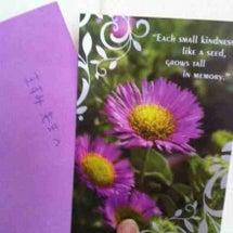 自分開花プログラムを…
