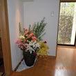 2万円以上の花です!…