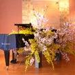 群馬県前橋市のピアノ…