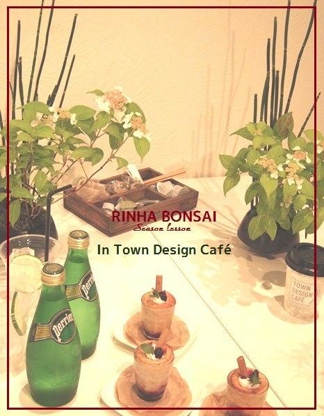 bonsai life      -盆栽のある暮らし- 東京の盆栽教室 琳葉(りんは)盆栽 RINHA BONSAI-琳葉盆栽 教室 モダン アジサイ 表参道