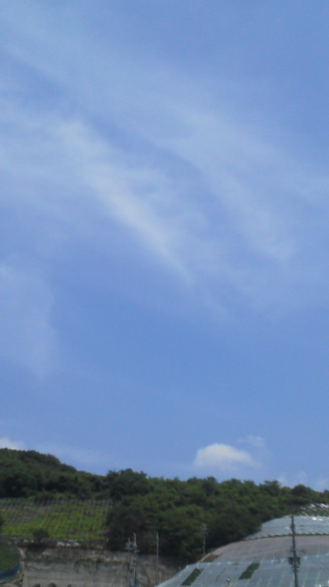 ぱんだのマラソンとお天気ブログ☆目指せサロマ湖100Kウルトラマラソン☆-20130608105832.jpg