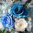 青バラの魅力