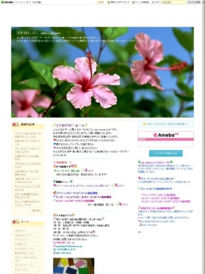 川越周辺☆主婦のための出張ロミロミ&リフレクソロジー【Aloha Bloom】-ena
