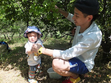 嵐山ー高雄パークウエイ スタッフブログ