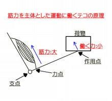 脱力~Reset Style(リセットスタイル)~-筋力テコ