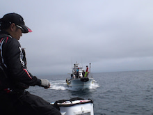 $JELLYの釣りバカ日誌-SN3P0213.jpg