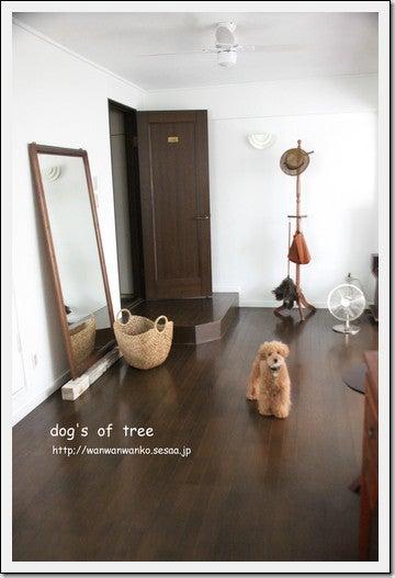 dog's of tree