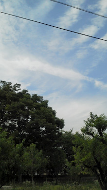 ぱんだのマラソンとお天気ブログ☆目指せサロマ湖100Kウルトラマラソン☆-20130623171632.jpg