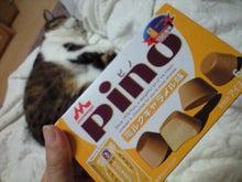 ずれずれブログ…湘南で猫と暮らせば…-CA390969.JPG