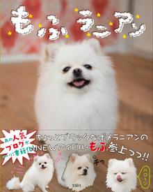 $ichijiku *ハンドメイドアクセサリー*-もふラニアン
