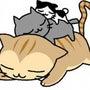 長崎「尾曲がり猫」