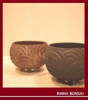 bonsai life      -盆栽のある暮らし- 東京の盆栽教室 琳葉(りんは)盆栽 RINHA BONSAI-琳葉盆栽 鉢 モダン ①