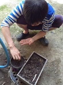 京町家を買って改修する男のblog-植える