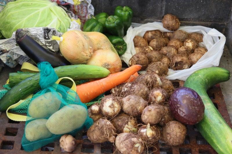 歩き人ふみの徒歩世界旅行 日本・台湾編-あふれる野菜