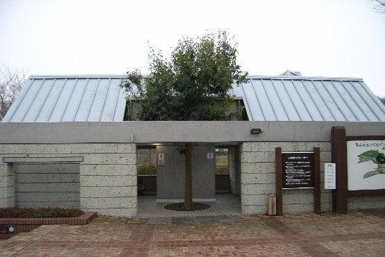 LPE.建築studioのCOLUMN-toho11-3