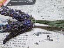 花首を縛る