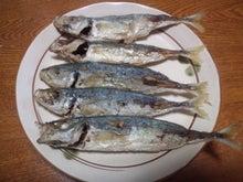 姫島で釣ったアジの唐揚げ