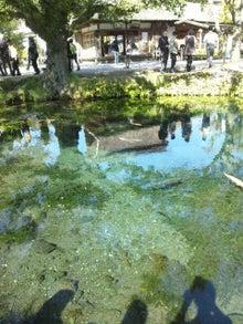 素敵やん-忍野八海 湧池