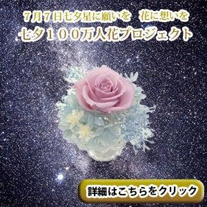 hana&peace 代表 高橋弘実のブログ