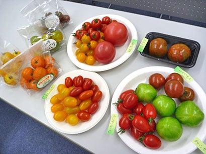 野菜ソムリエnody_nody-トマト