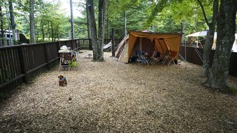 ワンコを連れて!子供と一緒にキャンプに行こう!-2013北軽井沢スウィートグラス53