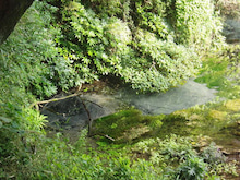 ルナシャイン・輝☆ブログ-柿田川富士山の湧き水群3