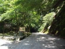 ルナシャイン・輝☆ブログ-天城トンネル1