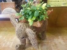 岡山県倉敷市にあるヘアサロン、ing's☆hair(イングス・ヘアー)