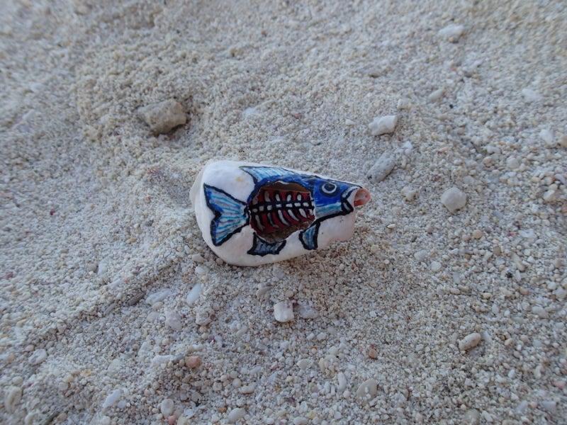 歩き人ふみの徒歩世界旅行 日本・台湾編-中の見える魚