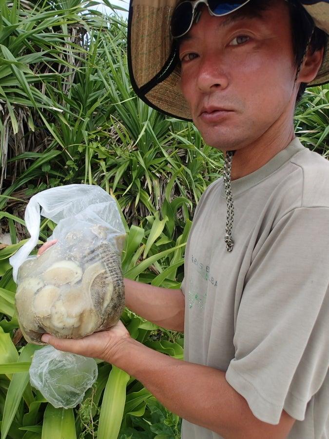 歩き人ふみの徒歩世界旅行 日本・台湾編-大漁