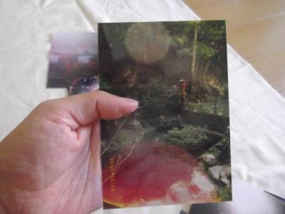 $札幌南区/等身大の自分がわかる『生命の樹』活用法-オーブの写真