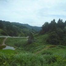 新潟県(長岡野菜)