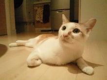 PFL★MIKIのブログ-2013072719180000.jpg