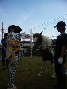 富里ホースパークの馬たち