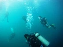 海南潜水 hainandivingのブログ-フィリピン2