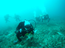 海南潜水 hainandivingのブログ-フィリピン4