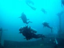 海南潜水 hainandivingのブログ-フィリピン7-7