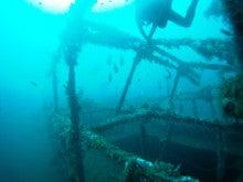 海南潜水 hainandivingのブログ-フィリピン7-8