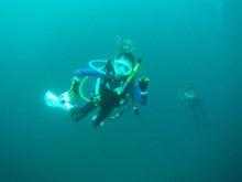 海南潜水 hainandivingのブログ-フィリピン6-11