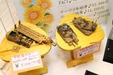 猫(クータくん)とコレクション