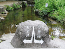 fishおばさんの憩いの広場Ⅱ-分水嶺