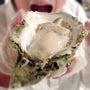 8月8日は「岩牡蠣の…