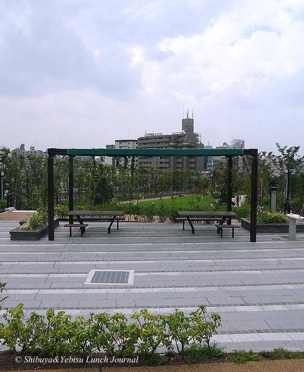 ●[渋谷&恵比寿]ランチ・ジャーナル-目黒天空庭園4