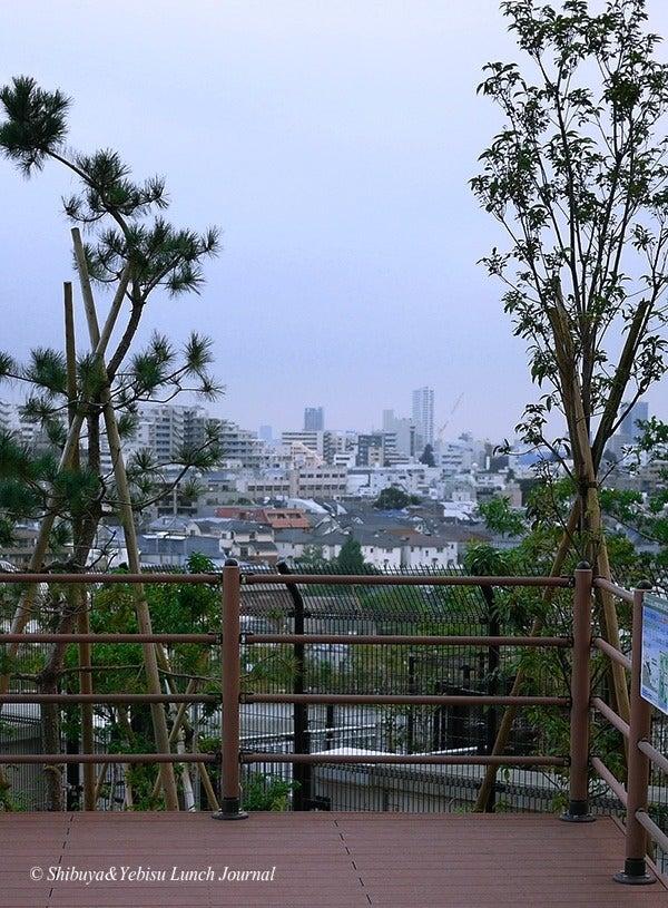 ●[渋谷&恵比寿]ランチ・ジャーナル-9